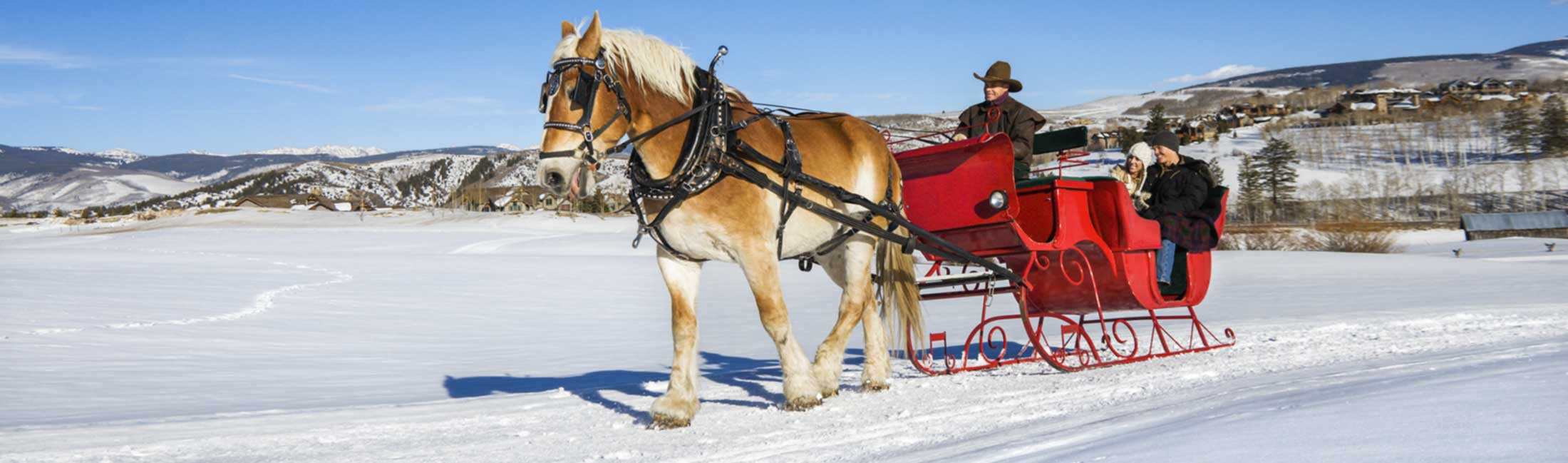 Sleigh Rides in Missoula, Montana